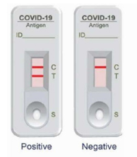 ezLabs® COVID-19 Antigen Test